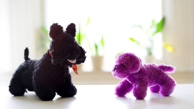 Zwei Stoffhunde, der eine schwarz, der andere violett.