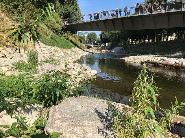 Fluss Wiese im Kleinhüningerquartier. Besucher schauen von der Brücke herab auf den Fluss.