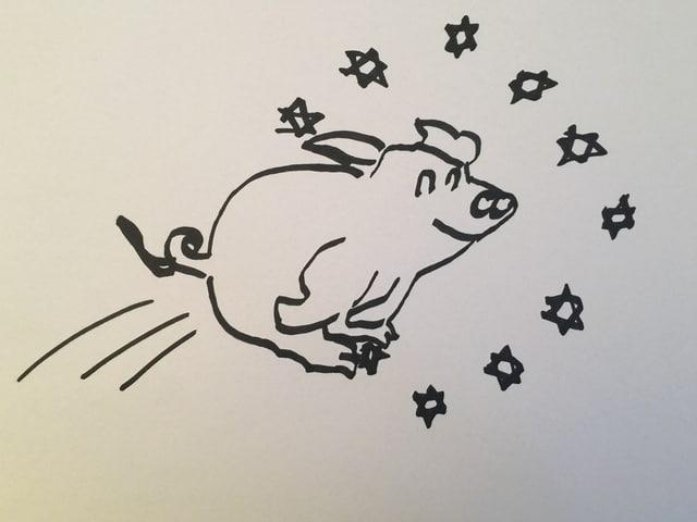 Ein Schweinz springt durch einen Ring mit EU-Sternen