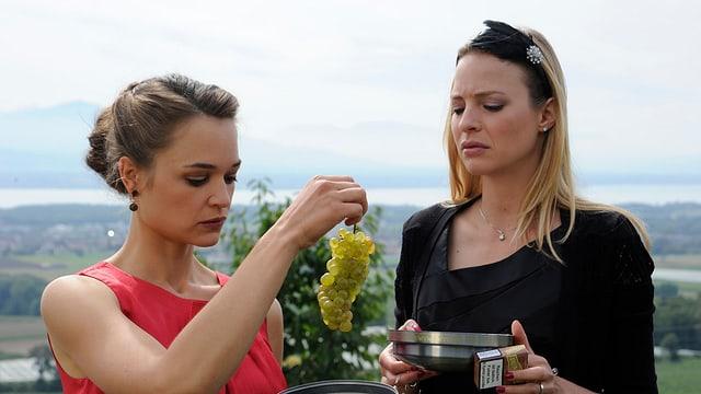 Zwei Frauen betrachten eine Staude von Weintrauben.