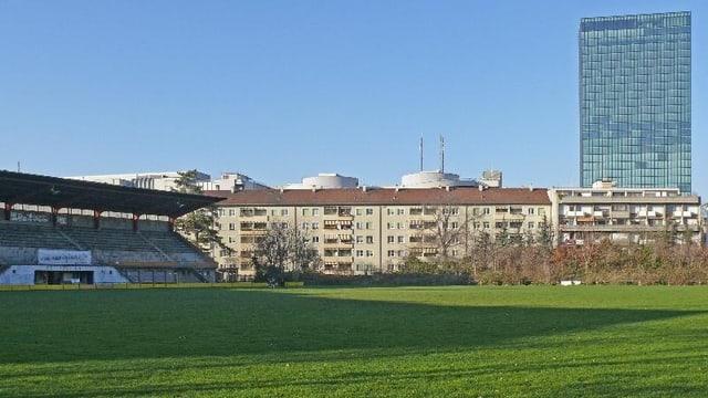 Die Grünfläche des Landhofs mit Häuserreihe und Messeturm im Hintergrund.