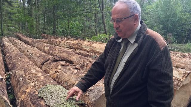 Mann zeigt auf Baumrinde.