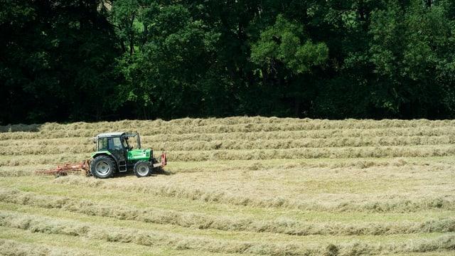 Bauer im Traktor beim Heuwenden.