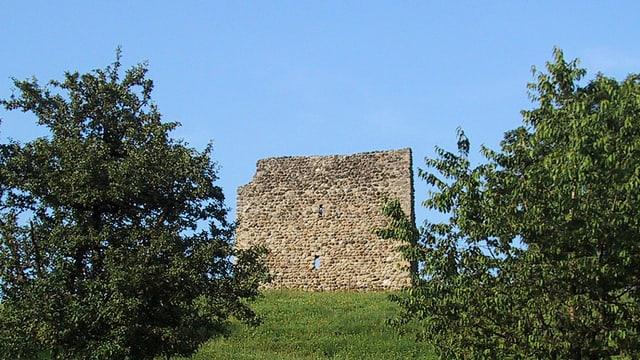 Ruine Anwil.