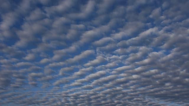 Wellenförmig angeordnete Quellwolken im mittleren Stock der Atmosphäre.