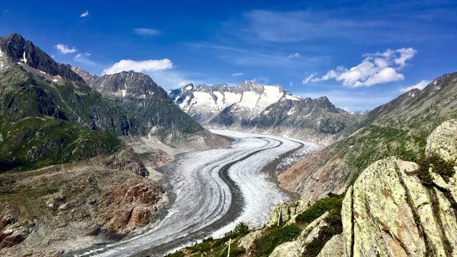 Ausgeaperter Aletschgletscher