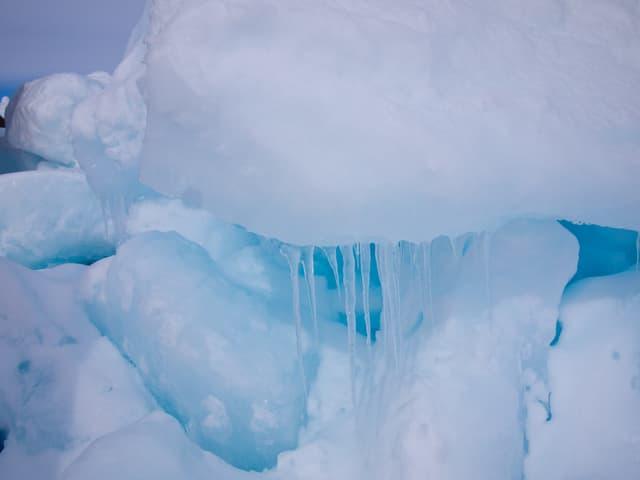 Ein Eisblock mit Tannenzapfen