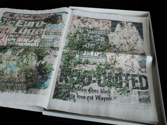 Zeitung, auf der Samen spriessen