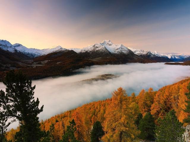 Nebel der ins Tal zieht. Darüber Sonnenaufgang mit farbigen Lärchen