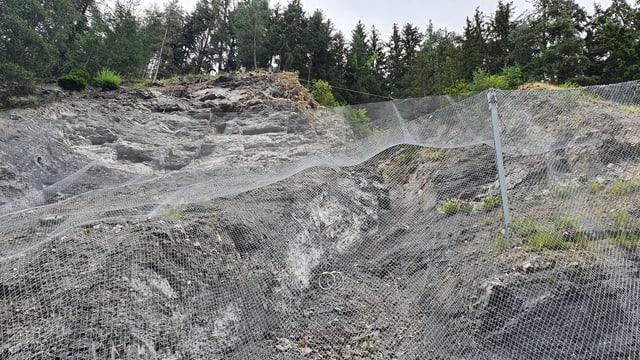 Situaziun privlusa sisum la bova crudada in december 2019