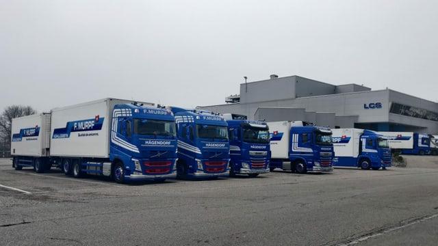 Mehrere Lastwagen auf dem Parkplatz eines Logistikzentrums.