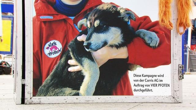 Spendensammel-Plakatständer