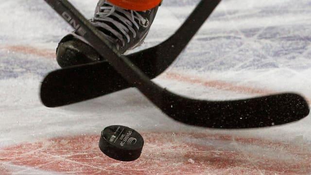in puck da hockey e duas palas