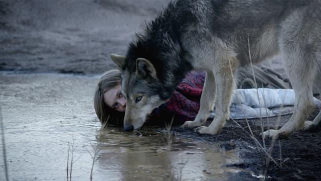 Eine Frau und einen Wolf trinken zusammen Wasser aus einem See.