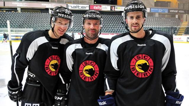 Collenberg, Metropolit und Grillfors (von links) sollen den Meister vorwärts bringen.