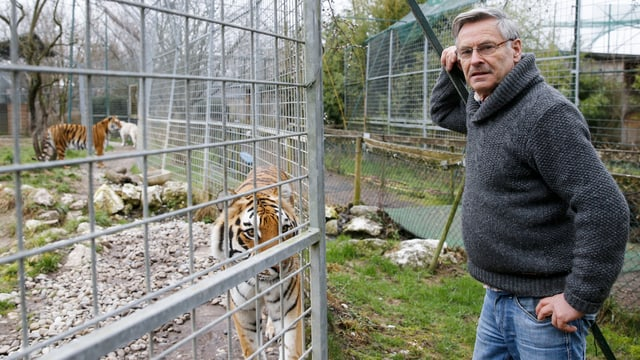 René Strickler mit Tiger
