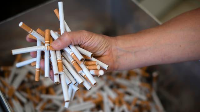 in pugn plain cigarettas