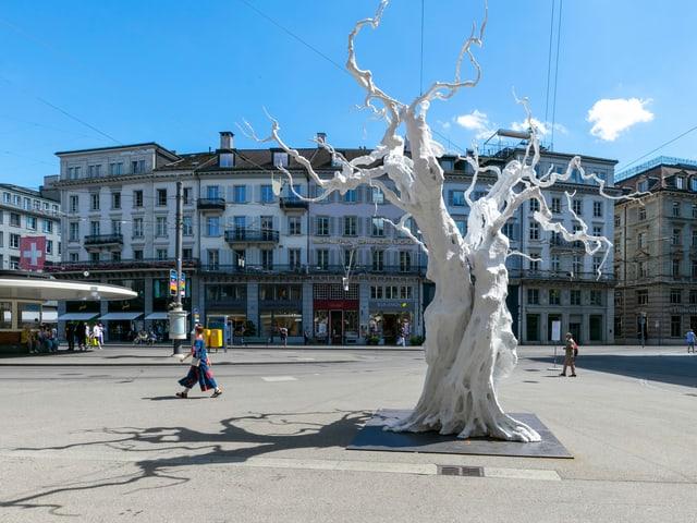 Ein weisser Baum steht inmitten eines öffentlichen Platzes.