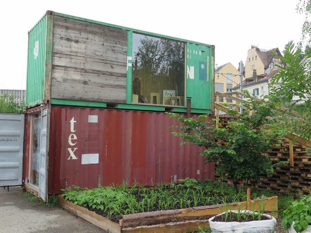 Farbige Container, Pflanzen