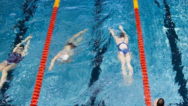 Schwimmer in einem Hallenbad in Zürich