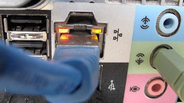 Netzwerkkabel eines Computers