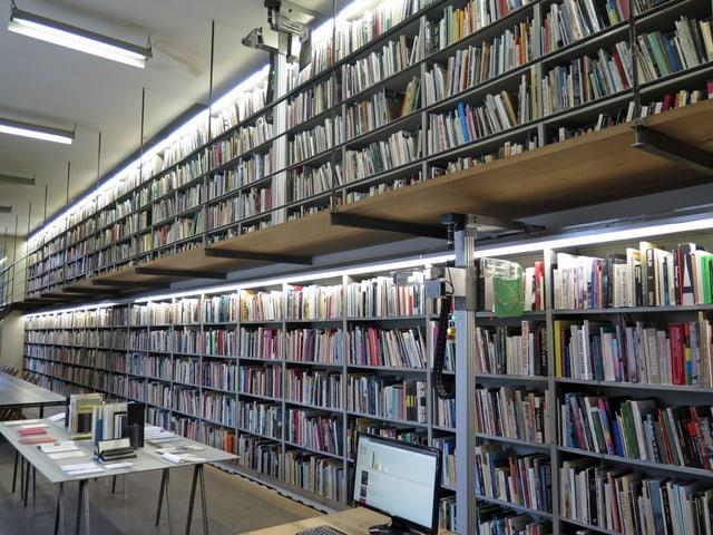 Langes Regal gefüllt mit Büchern