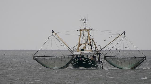 Fischkutter mit zwei vollen Netzen