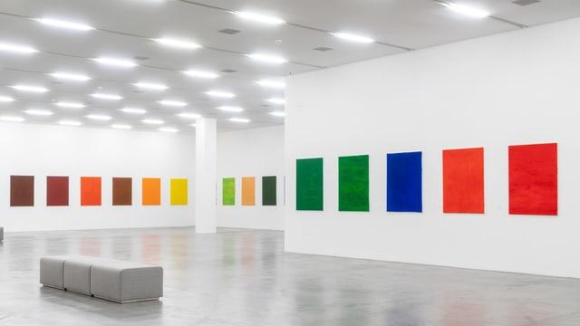 Farbige Bilder in einem Ausstellungsraum