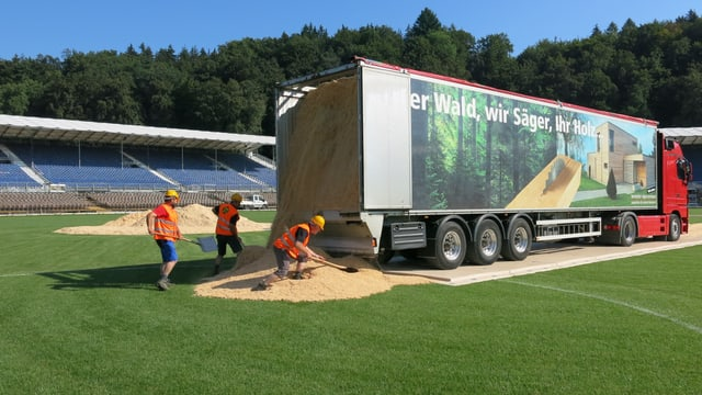 Arbeiter laden Sägemehl aus einem Lastwagen.