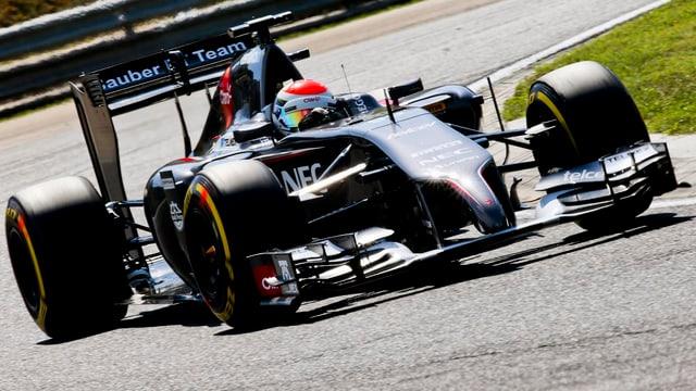 Sauber-Pilot Adrian Sutil im freien Training in Budapest