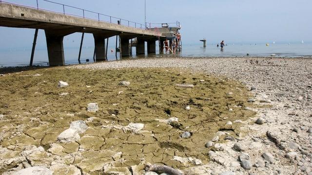 Der Steg eines Strandbades führte 2003 über trockenen Seeboden in den Bodensee.