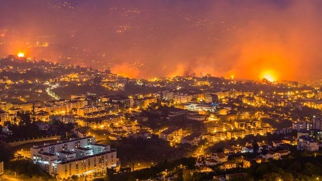 Incendi en il Portugal.