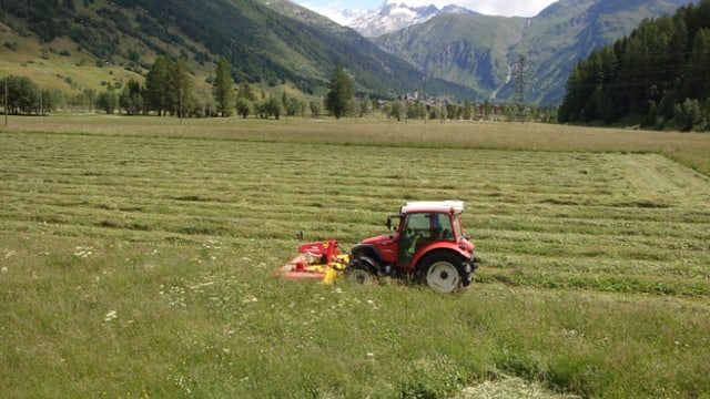 Roter Traktor mäht Wiese.