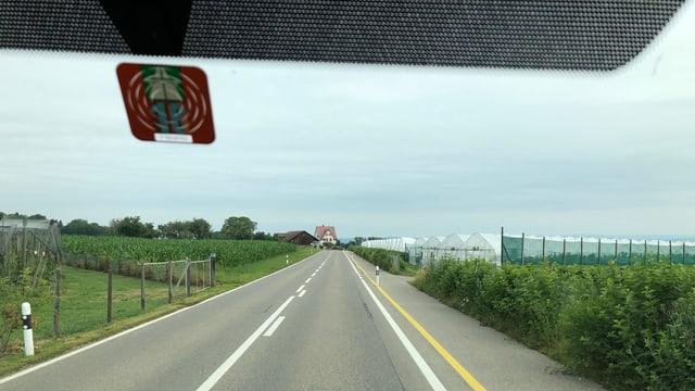 Autofahrt durch eine Thurgauer Landschaft.