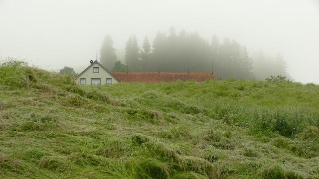 Appenzellerhaus im Nebel