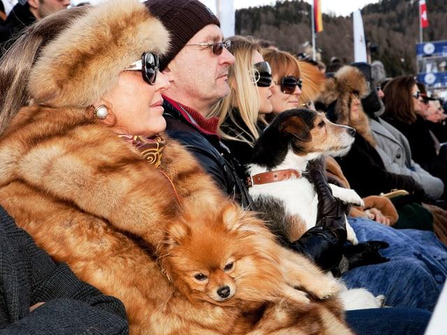 In Pelz gekleidete Zuschauer auf einer Tribüne.