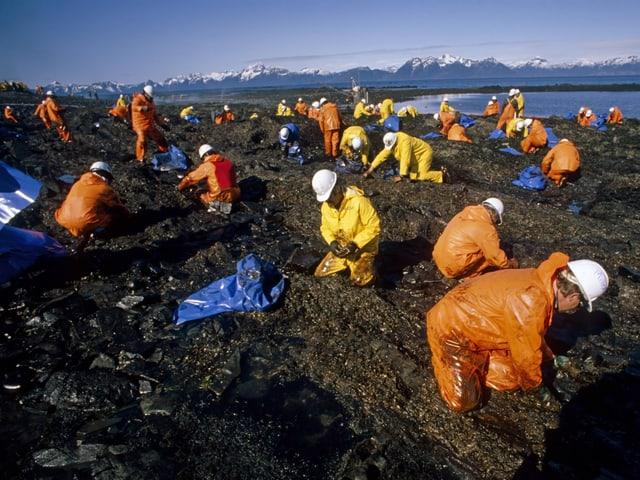 Dutzende Leute reinigen die Küste
