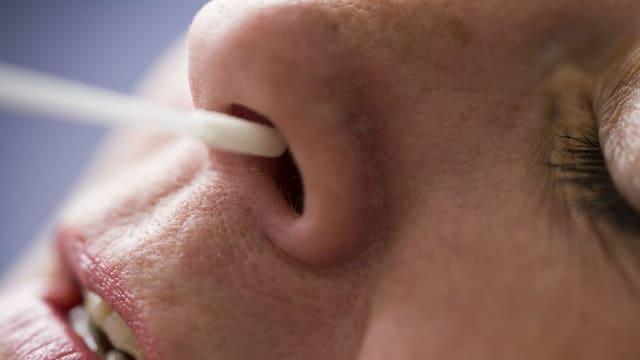Einer Frau wird ein Test-Stäbchen in die Nase eingeführt.