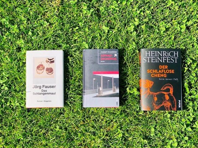 """Die Romane """"Das Schlangenmaul"""" von Jörg Fauser, """"Asphaltdschungel"""" von Joseph Incardona und """"Der schlaflose Cheng"""" von Heinrich Steinfest liegen auf grünem Rasen"""