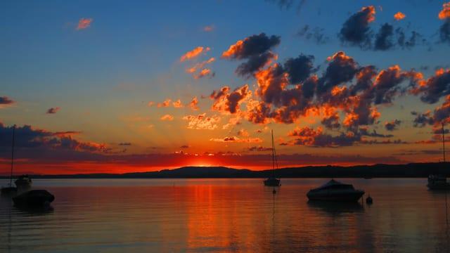 Sonnenaufgang mit Quellwolken über dem Murtensee