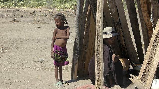 Schlimmste Dürre seit 40 Jahren