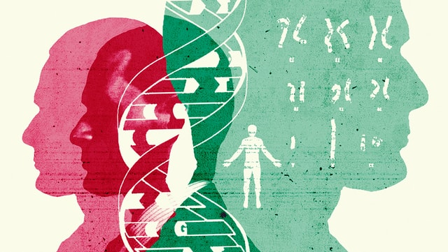 Illustration: Umrisse von Menschen und DNA
