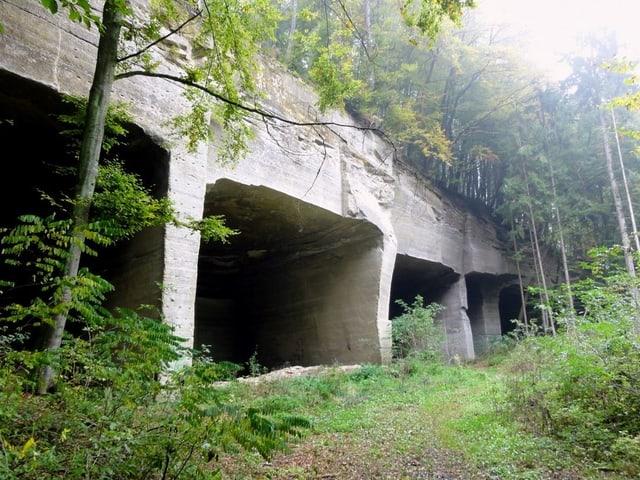 Höhlen in einem Fels