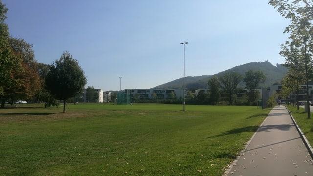 Sportplatz und Wiese