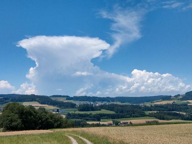 Landschaft mit Gewitterwolke am Horizont mit dem typschen Amboss