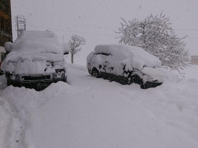 Parkierte Autos im Schnee.
