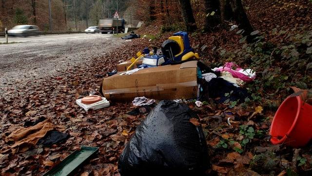 Illegal entsorgter Abfall: Der Kanton Aargau prüft Massnahmen.