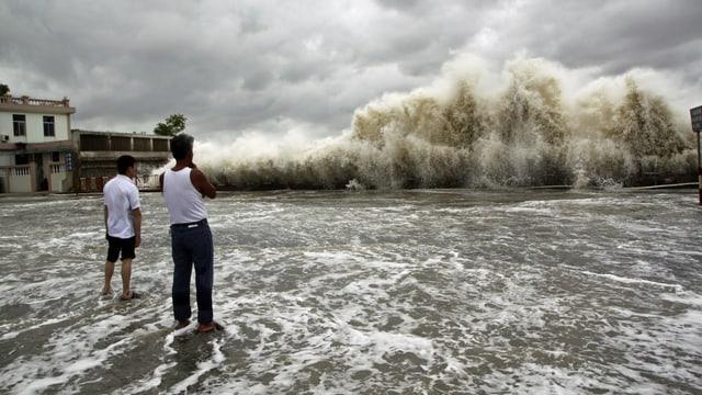 Menschen in der chinesischen Stadt Shantou der Provinz Guangdong beobachten die riesigen Wellen, die «Usagi» an die Küste führt. (reuters)