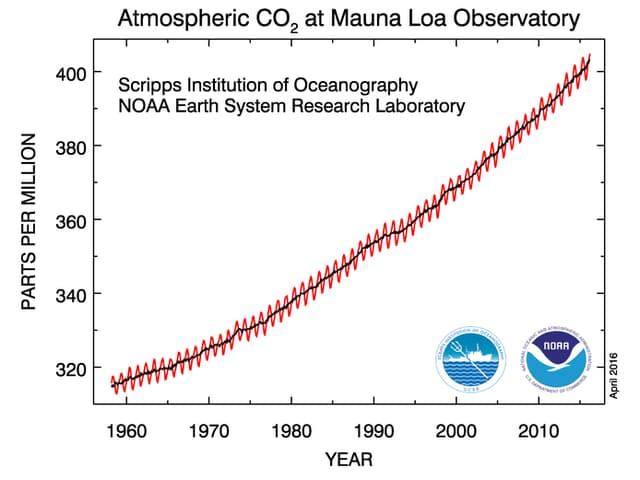 Der Verlauf vom atmosphärischen Kohlendioxid zeigt nach oben