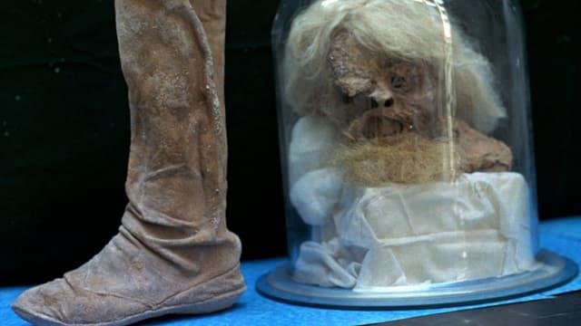 Lederstiefel und mumifizierter Männerkopf unter einer Glasglocke